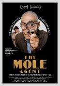Poster for IDFA Extended: The Mole Agent
